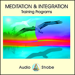 Meditation & Integration (Tamas Lab.)